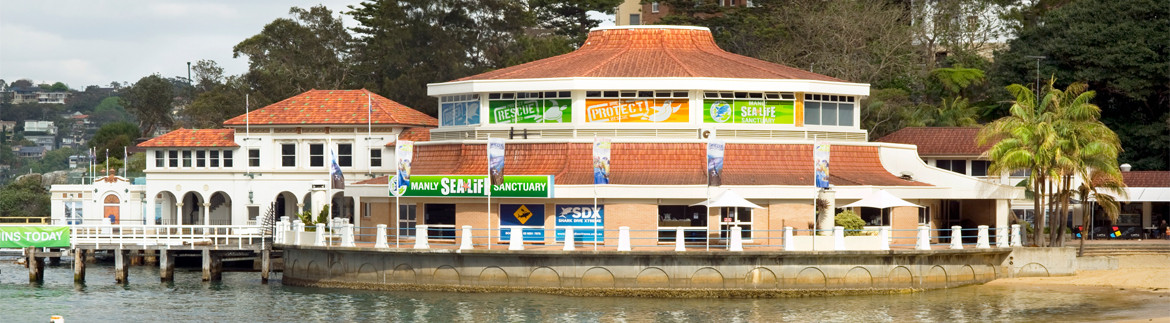 Home_Remedial_Manly_SEA LIFE_Sancturary_1170x323